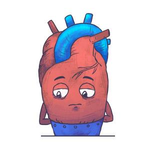 Herz-Kreislaufphysiologie lernen mit den Eselsbrücken von Meditricks